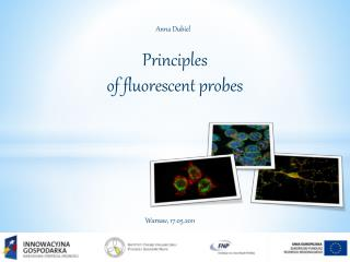 Principles of  fluorescent probes