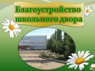 Благоустройство  школьного двора