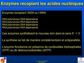 Enzymes recopiant les acides nucléiques