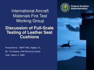 International Aircraft Materials Fire Test Working Group