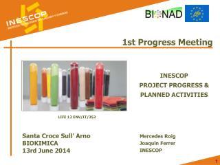 1st Progress Meeting