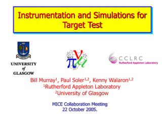 Instrumentation and Simulations for Target Test