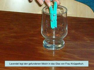 Lavendel legt den gefundenen Molch in das Glas von Frau Knüppelkuh.