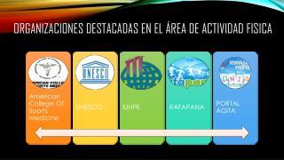Organizaciones destacadas en el área de actividad fisica