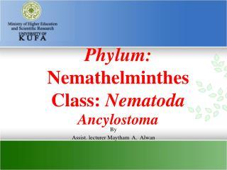 Phylum:  Nemathelminthes Class:  Nematoda  Ancylostoma