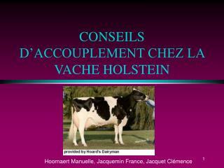 CONSEILS D ACCOUPLEMENT CHEZ LA VACHE HOLSTEIN