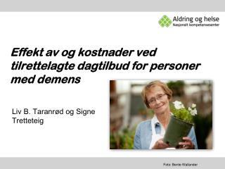 Effekt av og kostnader ved  tilrettelagte dagtilbud for personer med demens