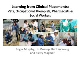Learning from Clinical Placements:  Vets, Occupational Therapists, Pharmacists & Social Workers