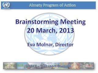 Almaty Program of Action