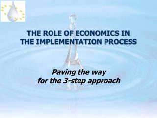 THE ROLE OF ECONOMICS IN  THE IMPLEMENTATION PROCESS
