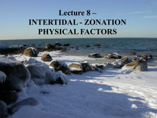 Lecture 8 – INTERTIDAL - ZONATION PHYSICAL FACTORS