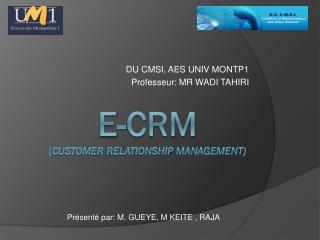 E-CRM ( customer relationship  management)