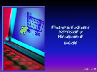 Electronic Customer Relationship Management E-CRM