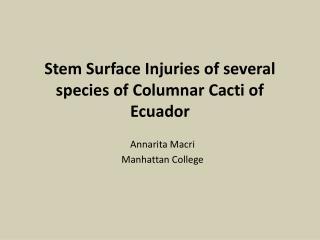 Stem Surface Injuries of several species of Columnar Cacti of Ecuador