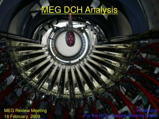 MEG DCH Analysis