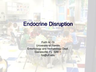 Endocrine Disruption