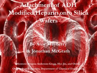 Attachment of ADH Modified Heparin onto Silica Wafers