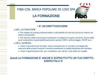 FIBA-CISL BANCA POPOLARE DI LODI SPA LA FORMAZIONE