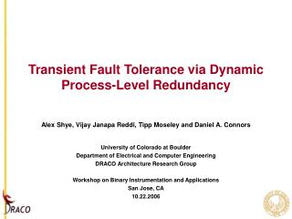 Transient Fault Tolerance via Dynamic Process-Level Redundancy