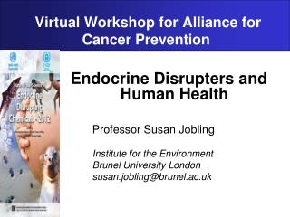 Virtual Workshop for Alliance for Cancer Prevention