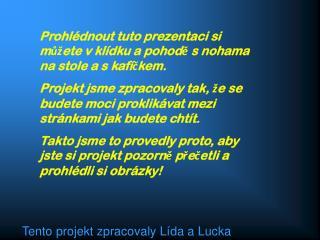 Tento projekt zpracovaly Lída a Lucka