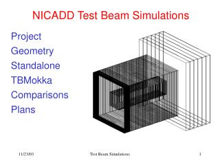 NICADD Test Beam Simulations