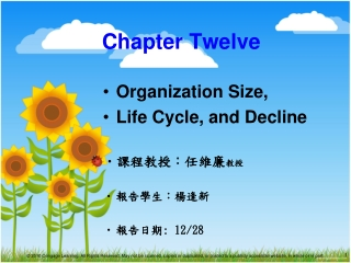 Organisation Size, Life Cycle and Decline