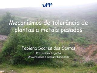 Mecanismos de tolerância de plantas a metais pesados