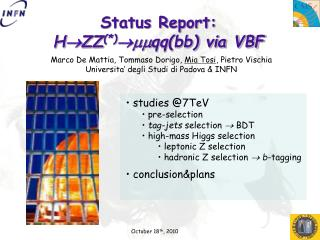 Status Report: H  ZZ (*)  mm qq(bb) via VBF