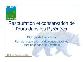 Restauration et conservation de l'ours dans les Pyrénées