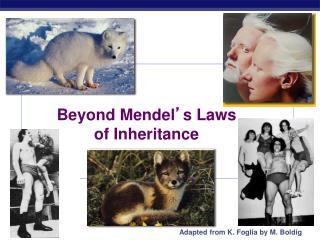 Beyond Mendel � s Laws of Inheritance