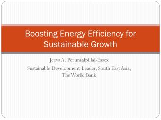 Boosting Energy Efficiency for Sustainable Growth
