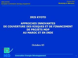 IRIS KYOTO APPROCHES INNOVANTES  DE COUVERTURE DES RISQUES ET DE FINANCEMENT DE PROJETS MDP