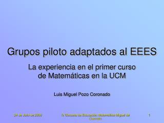 Grupos piloto adaptados al EEES