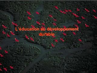 L'éducation au développement durable