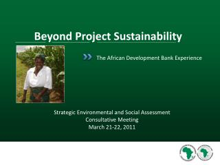 The African Development Bank Experience