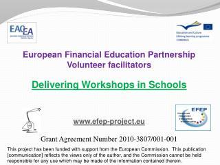 European Financial Education Partnership Volunteer facilitators Delivering Workshops in Schools