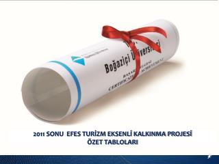 2011 SONU  EFES TURİZM EKSENLİ KALKINMA PROJESİ ÖZET TABLOLARI