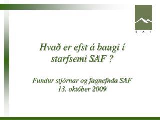 Hvað er efst á baugi í starfsemi SAF ? Fundur stjórnar og fagnefnda SAF 13. október 2009