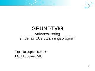 GRUNDTVIG -  vaksnes læring- en del av EUs utdanningsprogram
