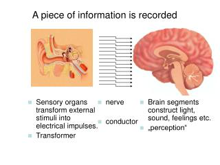 A piece of information is recorded