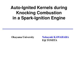 Auto-Ignited Kernels during Knocking Combustion  in a Spark-Ignition Engine