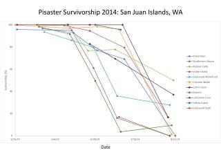 Pisaster Survivorship 2014: San Juan Islands, WA