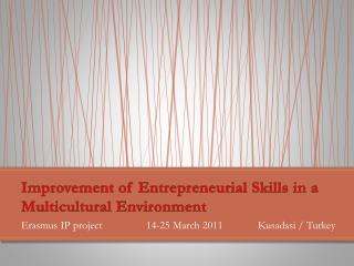 Improvement of Entrepreneurial Skills in a Multicultural Environment
