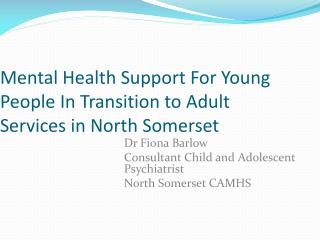 Mental Health Support For Young People In Transition to Adult Services in North Somerset