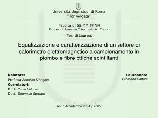 Relatore: Prof.ssa Annalisa D'Angelo Correlatori: Dott. Paolo Valente Dott. Tommaso Spadaro