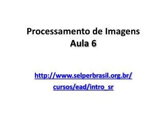 Processamento de Imagens Aula 6 selperbrasil.br/ cursos/ ead / intro_sr