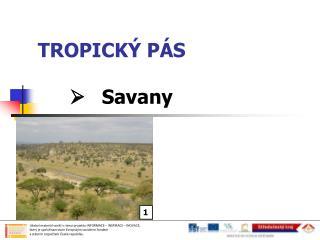 TROPICKÝ PÁS Savany