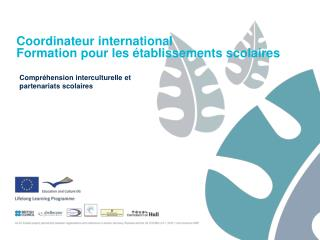 Coordinateur international  Formation pour les �tablissements scolaires