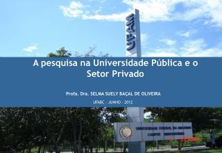 A pesquisa na Universidade Pública e o Setor Privado